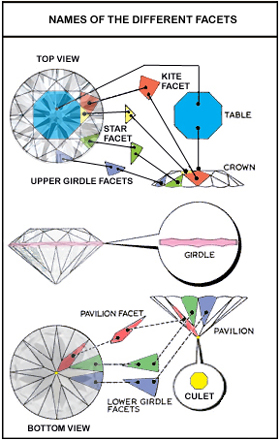 upper and lower girdle facets